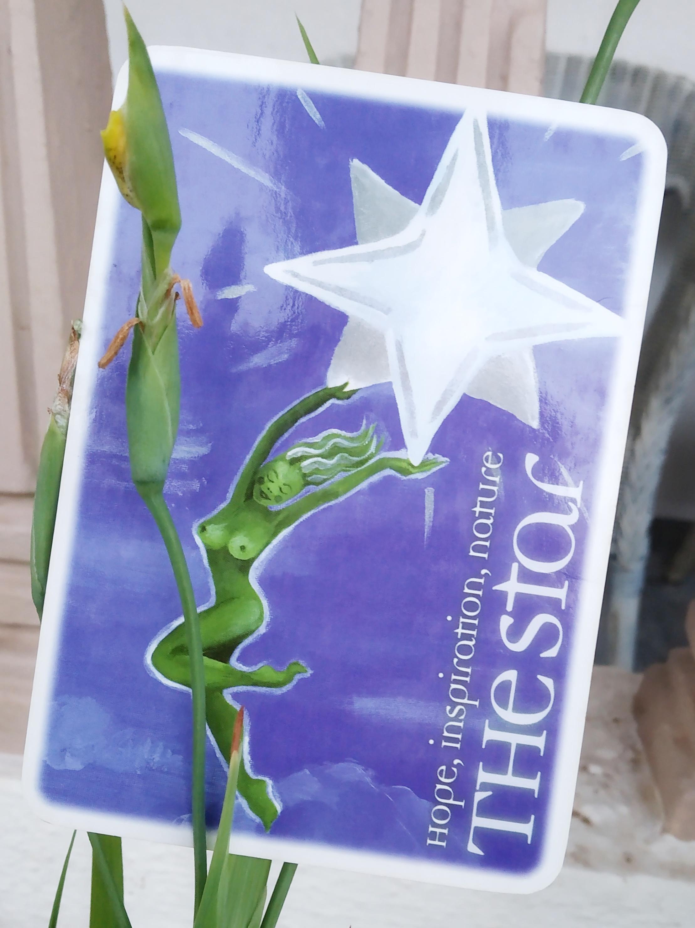 the star tarot card interpretation