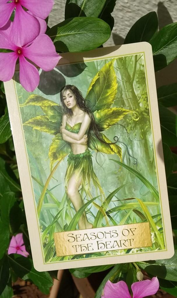 seasons of the heart, toni salerno, wisdom of the golden path