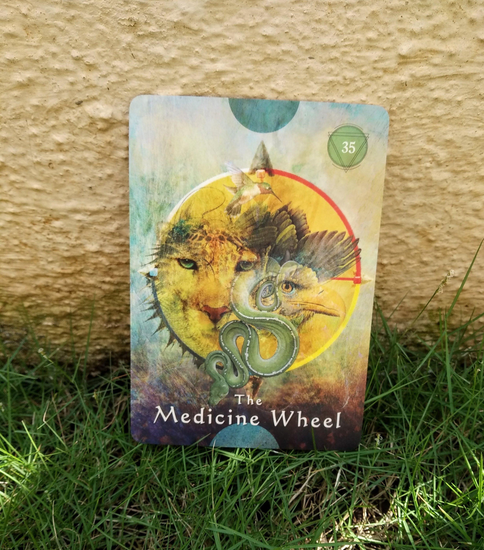 medicine wheel, colette baron reid