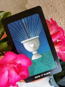 ace of cups tarot card meaning
