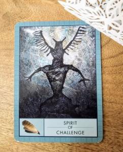 spirit of challenge, shaman's oracle, daily tarot reading
